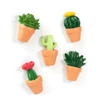 Cactus 5 pack, fridge magnets from Trendform.