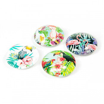 Jungle Bird magnets - trendy magnets from Trendform 4-pack