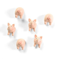 PIGGY magnets from Trendform FA4593 - trendy fridge magnets
